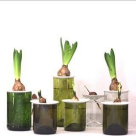 plantenvoeding - biologisch & organisch - 450ml